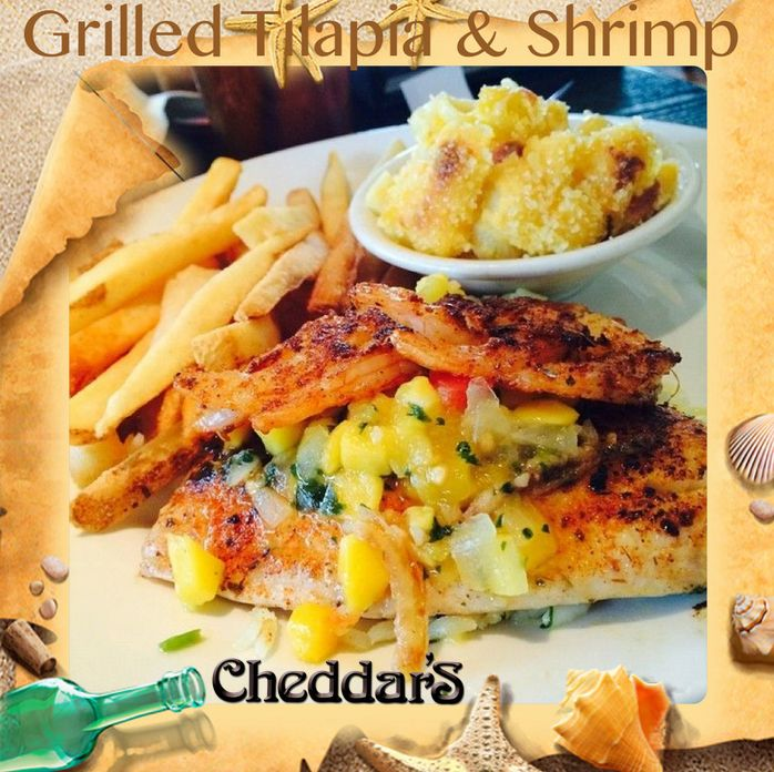 Cheddar S Scratch Kitchen Grilled Tilapia With Mango Salsa