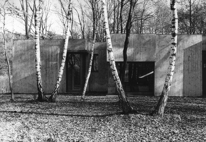 Casa nel bosco - Cini Boeri 1969