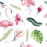 Tropisches Lokalisiertes Nahtloses Muster Mit Flamingo Tropische Zeichnung Des Aquarells, Rosafarbener Vogel Und GrünPalme, Trope - Wählen Sie aus über 64 Million qualitativ hochwertigen, lizenzfreien Stockfotos, Bilder und Vektoren. Melden Sie sich noch heute KOSTENLOS an. Bild: 94138638