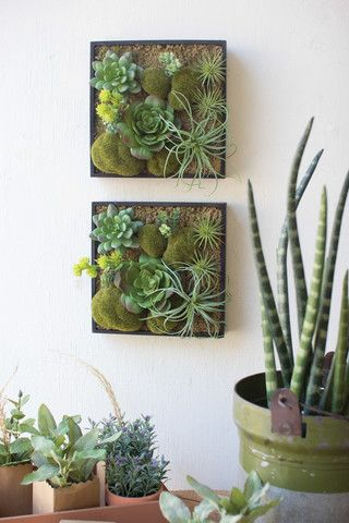 This Artificial Succulent Garden Wall Hanging With Wooden Box by Kalalou…