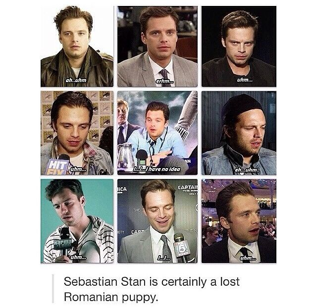 "Sebastian Stan, i love you | He's in character all the time. ""I don't remember ..."""