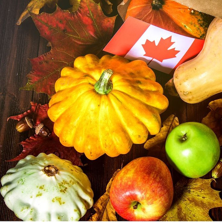 Do you know why we celebrate Thanksgiving in October? Head over to our blog to gobble up five fun facts about the holiday! (Link in Bio)  #GoDiscoverInspire  .  .  .  .  .  #travel #studenttravel #explore #explorecanada #thanksgiving #pumpkin #fall #orange #travelgram #travelphotography #love #brightsparktravel
