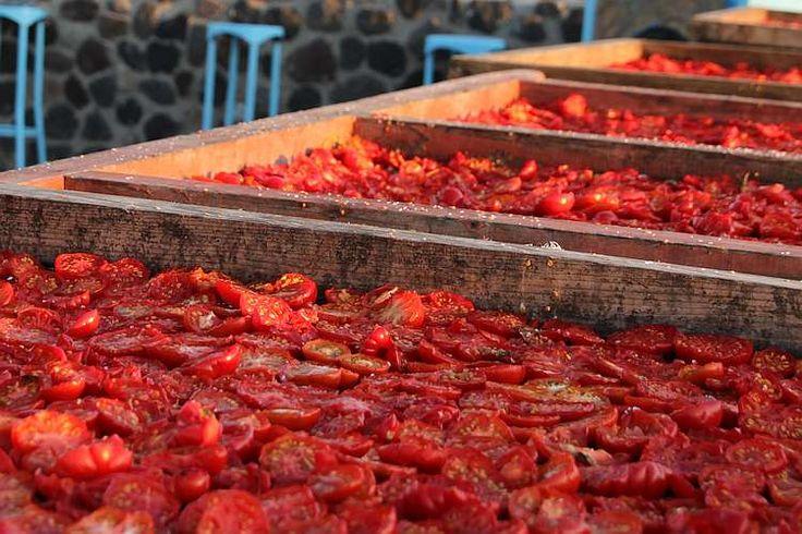 Was tun mit so vielen Tomaten - 5 gute Ideen für den Wintervorrat