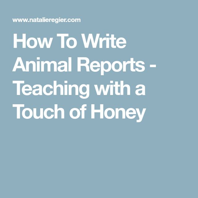 The 25+ best Report writing ideas on Pinterest Report writing - animal report template example