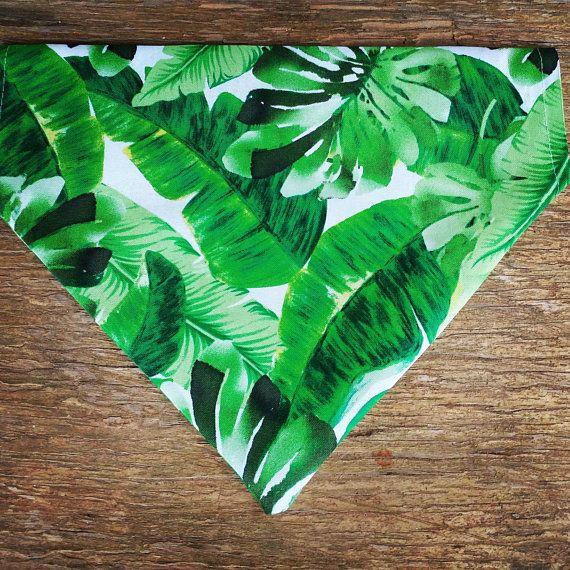 Tropical Palm Dog Bandana