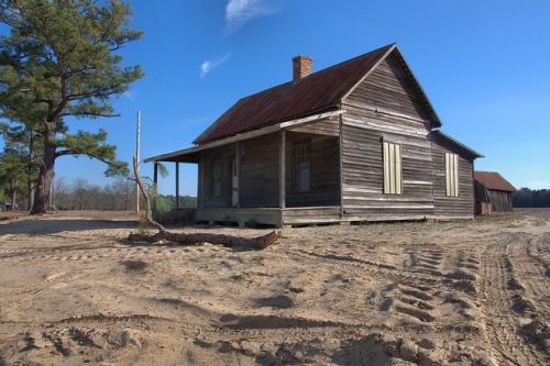 Tenant Farmhouse Dirt Yard Vernacular Architecture Pine Trees Candler County GA Photograph Copyright Brian Brown Vanishing South Georgia USA