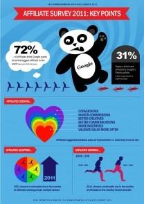 affiliate survey 2011