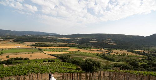 D.O. (Denominación Origen Somontano): En la provincia de Huesca, de inviernos fríos y veranos suaves, y con un suelo privilegiado que se acerca a los Pirineos.