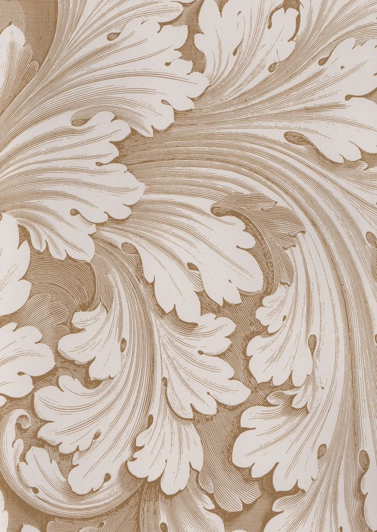 Acanthus Leaves Beige And Cream Acanthus Pattern Art Illustration Art