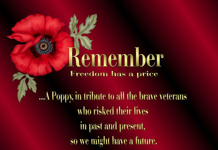 veterans day poems and tributes | Grave Interest: In Honor of Our Veterans on Veterans Day