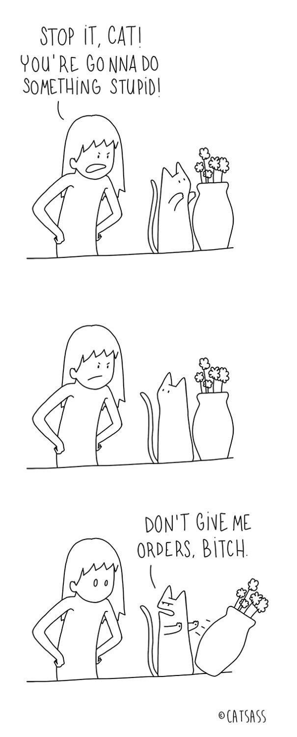 These Hilarious Cartoons Absolutely Nail What It's Like To Live With A Cat