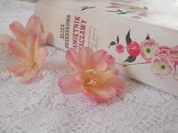 E. Orzeszkowa -PAMIĘTNIK WACŁAWY- piękna książka...