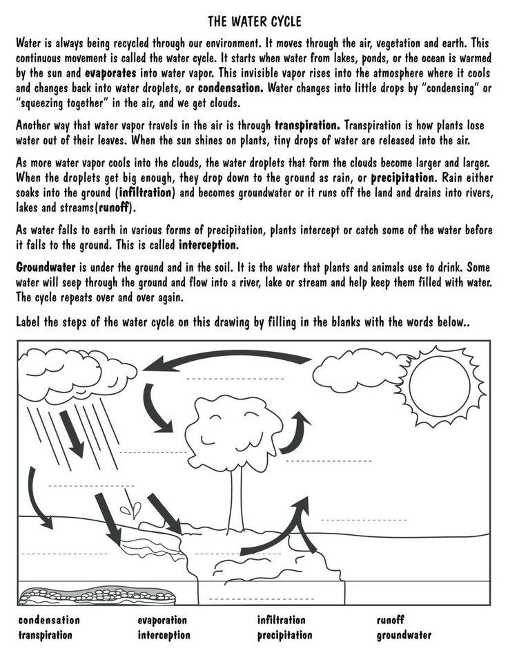 Water Cycle for Kindergarten Worksheets in 2020 Water