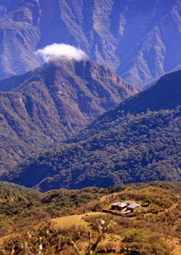 Travesía al ALTO CALILEGUA, Jujuy (2.900 msnm)