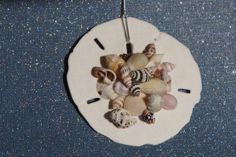 Hand-made Christmas tree ornament- beach sea shells and sand dollar