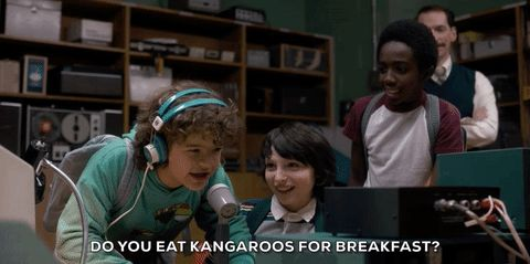 New party member! Tags: season 1 netflix australia stranger things dustin gaten matarazzo do you eat kangaroos for breakfast