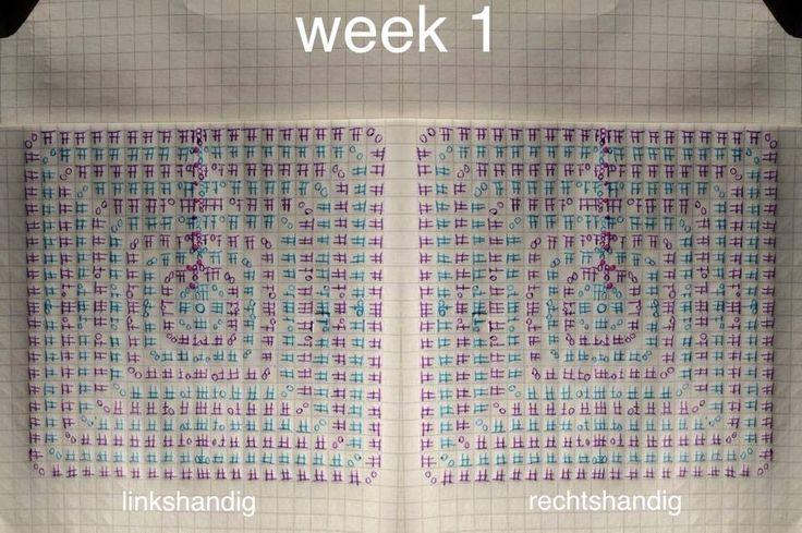 Telpatroon van week 1 gemaakt door Susan B.