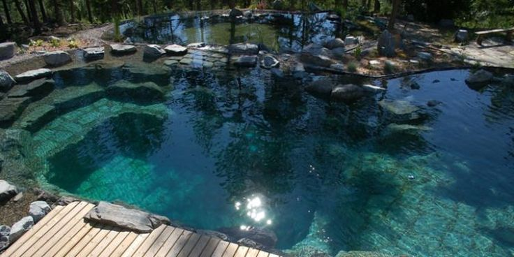 Pond Swimming Pool Design
