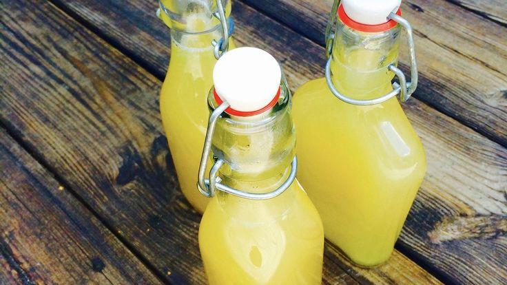 Recept: Raw Food Ingefärsshot Perfekt start på dagen! Ta en shot före varje frukost. Sätter igång din ämnesomsättning och får dig att vakna till på morgonen. Ingefäran förhindrar …