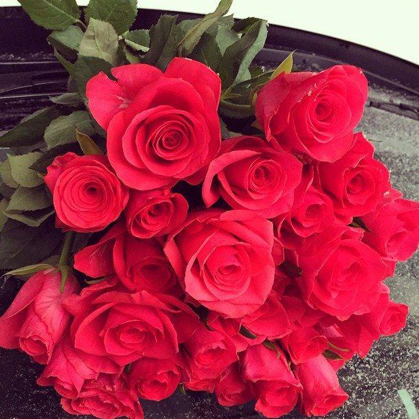 Valentines Day Roses Tumblr