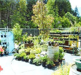 Top Crop - Cranbrook BC - Garden, Farm & Pet