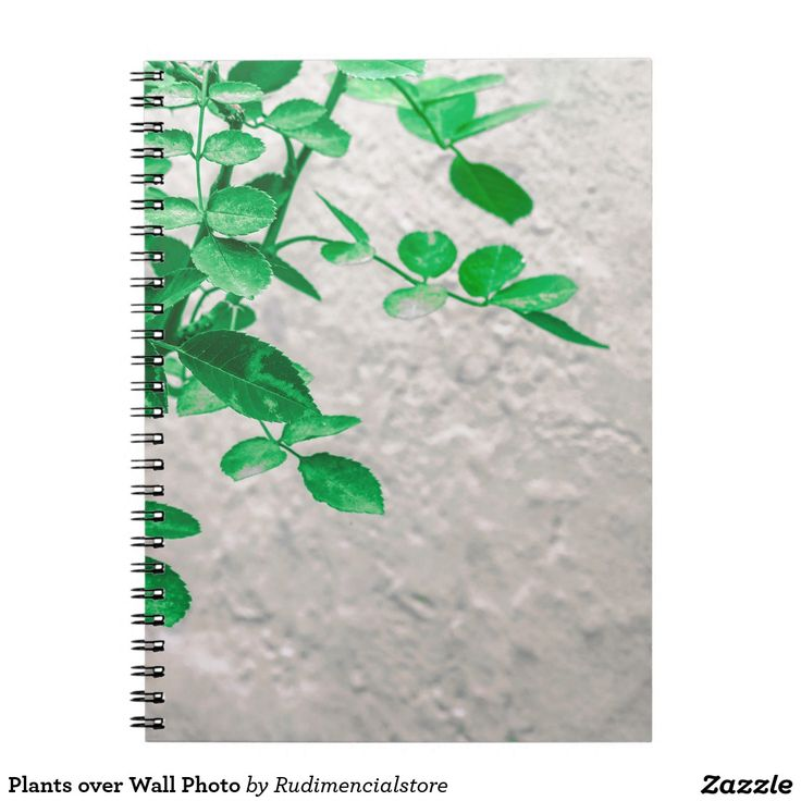 Plants over Wall Photo Notebook