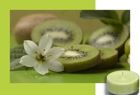 Kiwi Kiss - A sugary sweet tropical tryst melds bright, ripe kiwi slices with mouthwatering key lime, zesty clementine and exotic papaya. Pure paradise! You'll want to kiss and tell…  Available forms: Votive Candles, Large Tealight Candles, Scented Jar Candle, Fragrance Oil, Lip Gloss. #PartyLite