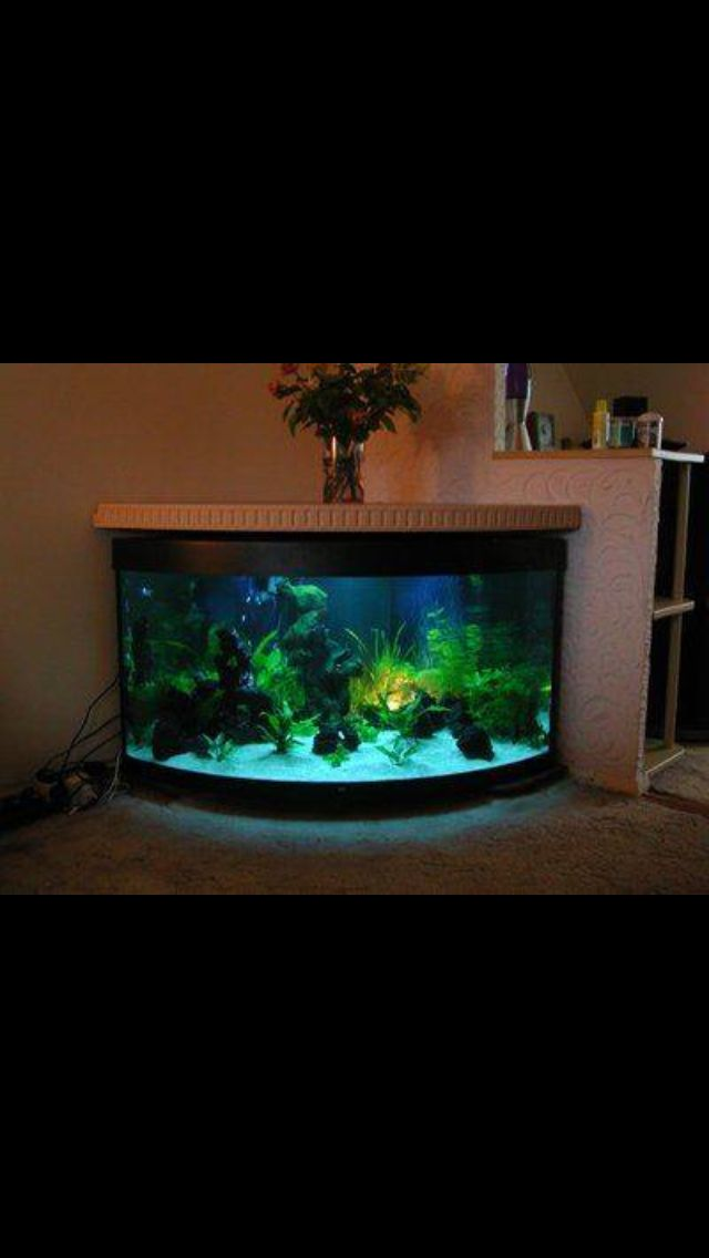 Fish tank stand building pinterest fish tank stand for Fish tank table stand