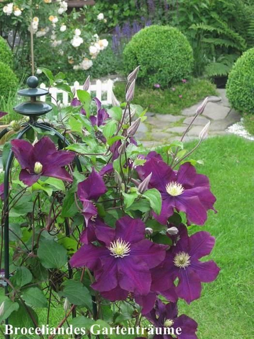 12 best images about broceliandes gartentr ume on pinterest gardens nice and cottages. Black Bedroom Furniture Sets. Home Design Ideas