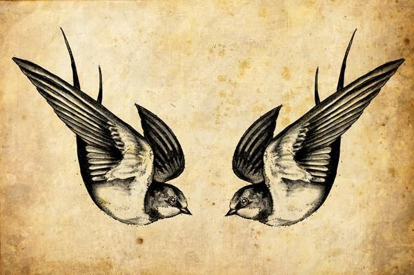 The swallow is a bird that chooses a mate for life and will only nest with that bird and no other. Therefore a swallow tattoo is also a symbol for everlasting love and loyalty to the family. Swallow pairs travel long distances, only to find their way back to each other at home. I want mine right on the pelvic region. Or a little bit above that........Idk.