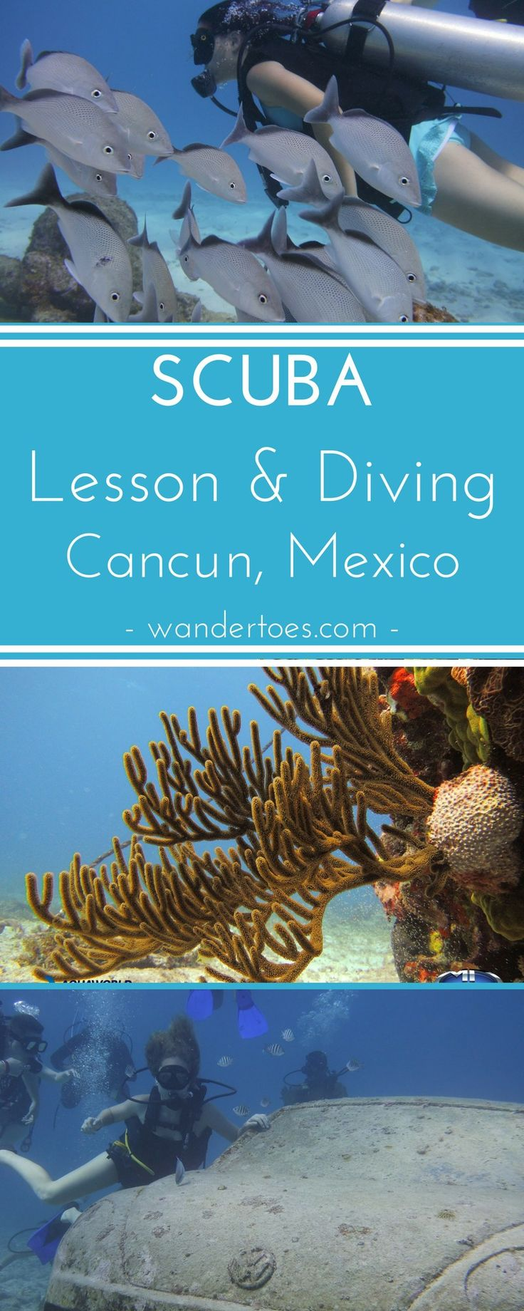 Best 25 scuba lessons ideas on pinterest scuba diving lessons cancun mexico a family scuba lesson and dive of musa the underwater museum 1betcityfo Gallery