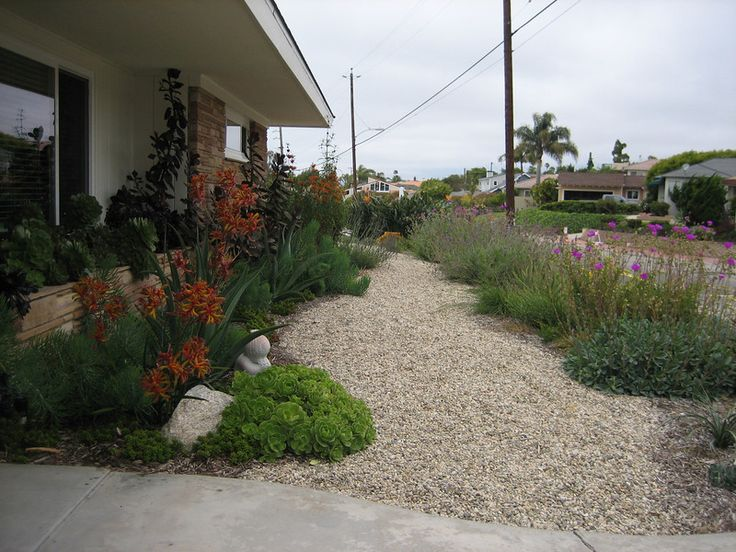 drought tolerant landscaping designs lose the lawn. Black Bedroom Furniture Sets. Home Design Ideas