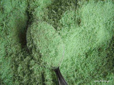 Φτιάχνω οικολογικό εντομοκτόνο για προστασία φυτών