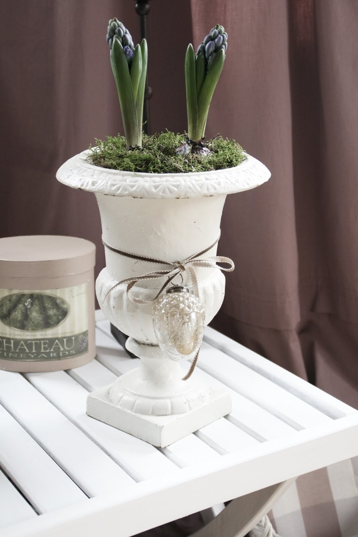 I have to do this...plant bulbs in some of my urns- either for inside or by the front door