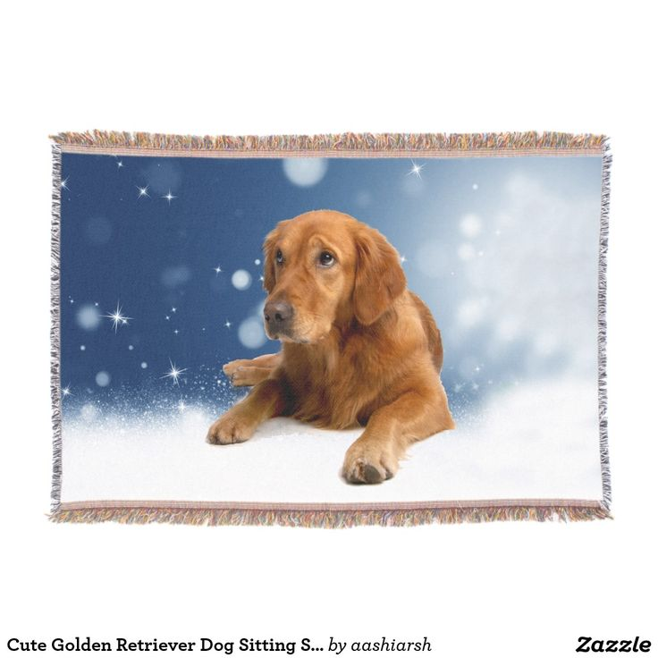 #Cute #Golden #Retriever #Dog #Sitting #Snow #Stars #Blue #Throw #Blanket #animal #pet #doglovers #animallovers #sky