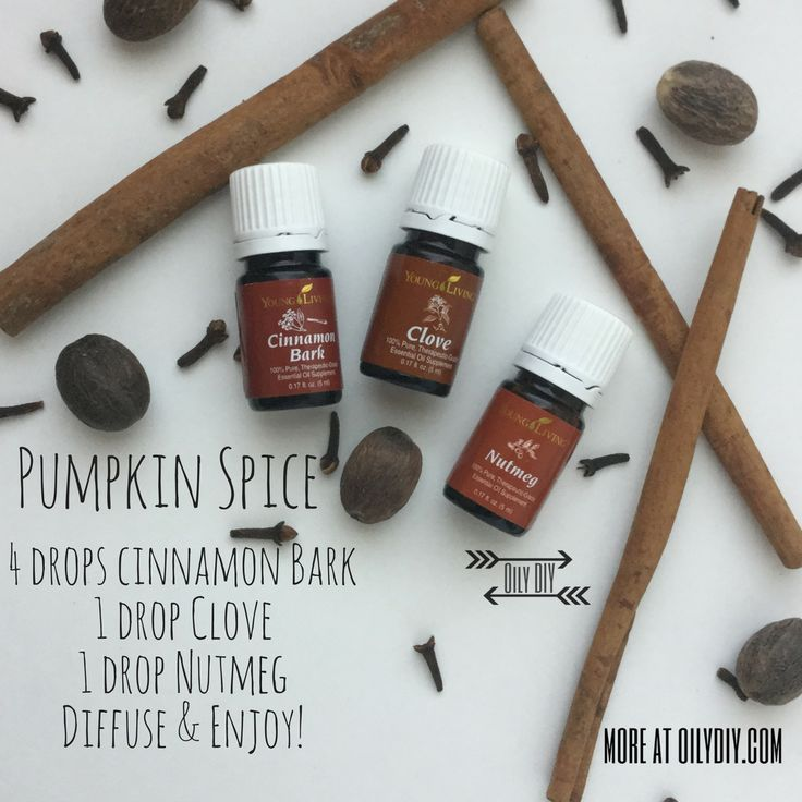Pumpkin Spice www.oilydiy.com #oilydiy #diy #youngliving #essentialoils #yleo #diffuser #fall