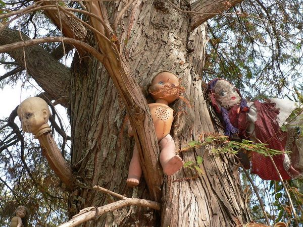 Isla de las munecas (Island of the dolls) in Mexico - home to hundreds of terrifying dolls