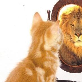Atitudes que vão melhorar a sua autoestima