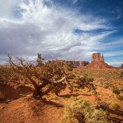 Monument Valley | Arizona/Utah | USA