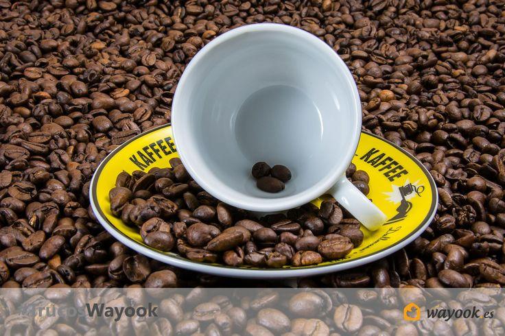 #TrucoWayook evita los malos olores de tu hogar poniendo en un recipiente un poco de agua y unos granos de café ¡así de fácil! una forma muy fácil de hacer un ambientador casero y económico para tu hogar. #Wayook