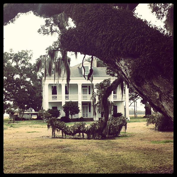 26 best images about felicity plantation on pinterest for Southern homes louisiana