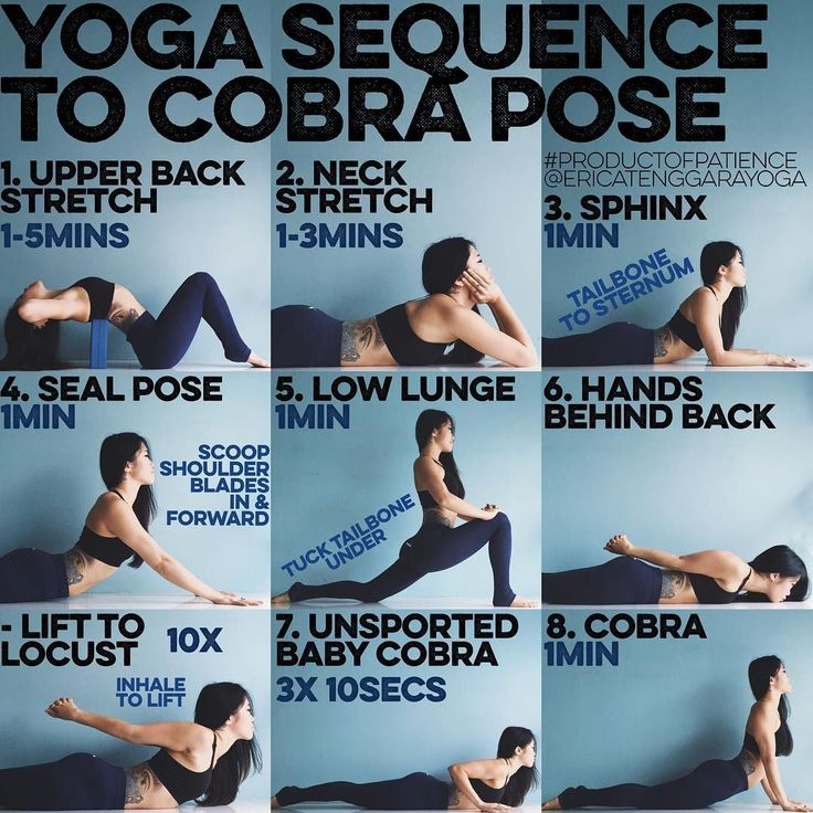 "Erica Tenggara | Yoga  on Instagram: ""YOGA SEQUENCE TO COBRA POSE: Cobra is one of those ""basics"" that when done well can set the tone for all back bends, this would be great for anyone of any age/level but if you have spine/neck issues this might not be for you. Remember there should be no pain during the practice, maybe a little discomfort but not pain 1. UPPER BACK STRETCH Ya'll know I love this one, it's my go to for all back bend warm ups & what I like to do in my spare time, use a…"