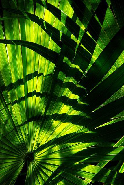 Green ...