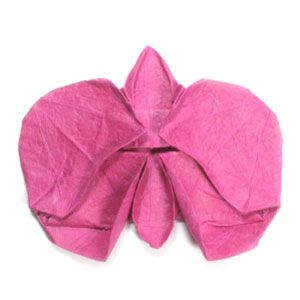 origami orchid flower- perfect for orchid lovers!!!