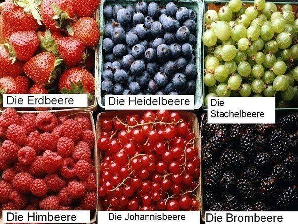 Die Beeren