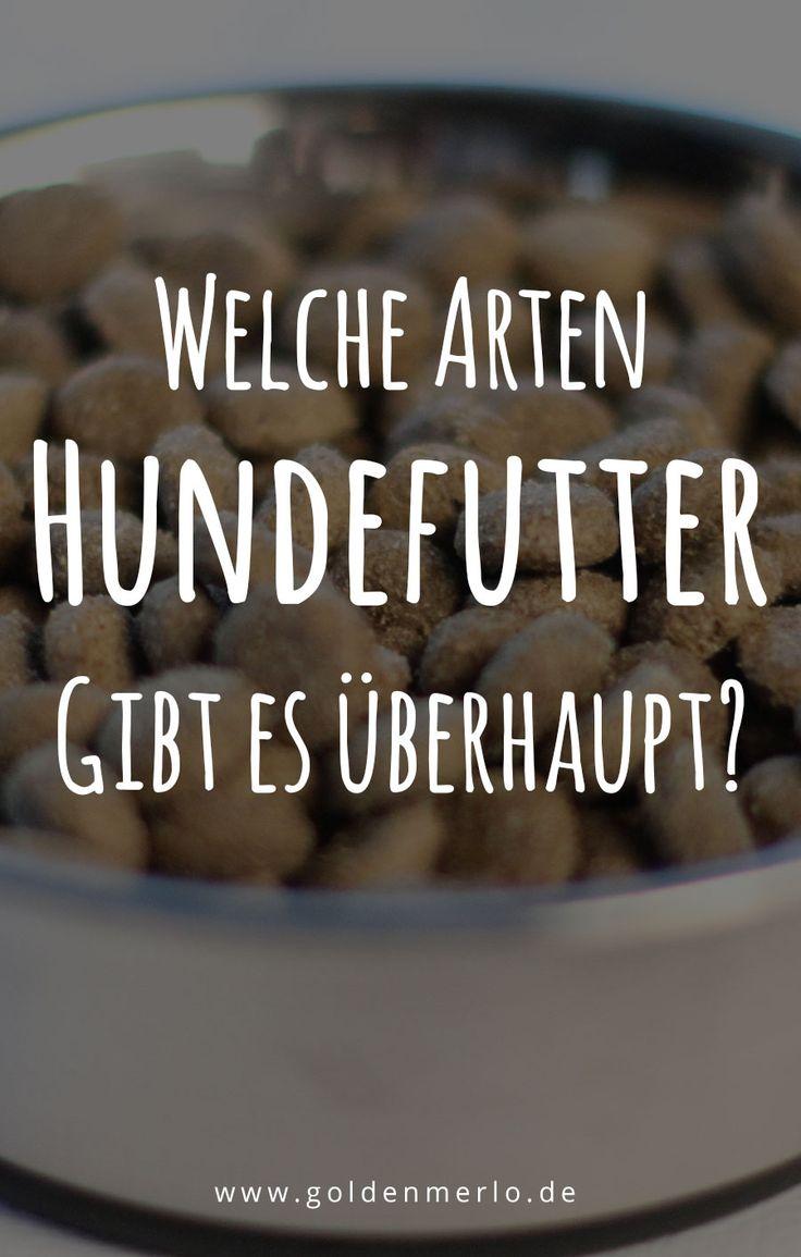 Welche Arten und Sorten Hundefutter gibt es überhaupt? Was sind die Unterschiede, Vorteile und Nachteile? Extrudiertes Trockenfutter | Kaltgepresstes Trockenfutter | Gebackenes Hundefutter | Halb-feuchtes Futter | Semi-moist | Soft Brocken | Nassfutter | BARF | #hunde #ernährung #futter #fütterung #nassfutter #feuchtfutter #dosenfutter #dose #trockenfutter #barf #fertigbarf #selbstkochen #selbermachen #zubereiten #aufbewahrung #lagerung | https://www.goldenmerlo.de