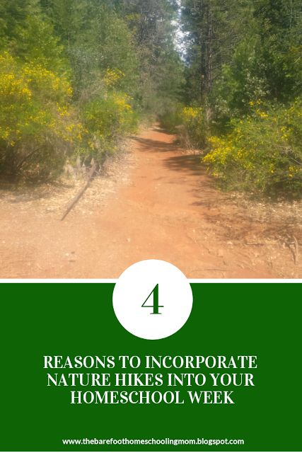 The Barefoot Mom: 4 Reasons To Incorporate Nature Hikes Into Your Ho...