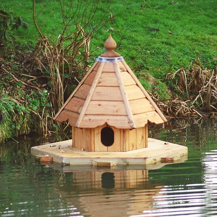 i really need a floating duck house at the lake.  really
