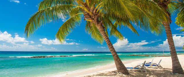 Barbados : Guide and Advice for Tourists, Photos, Links and Tips
