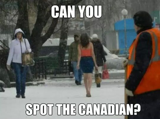 Spot the Canadian... More
